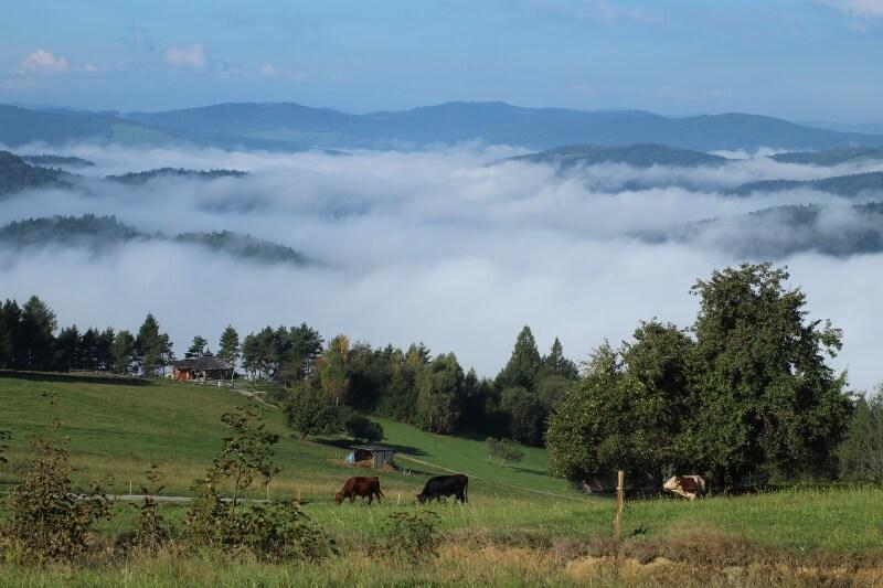 Góra Malnik.